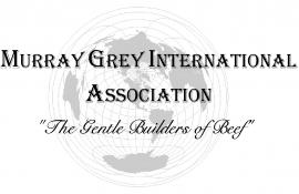 Murray Grey International Association
