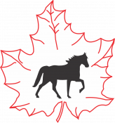 Canadian Registry of the Tennessee Walking Horse
